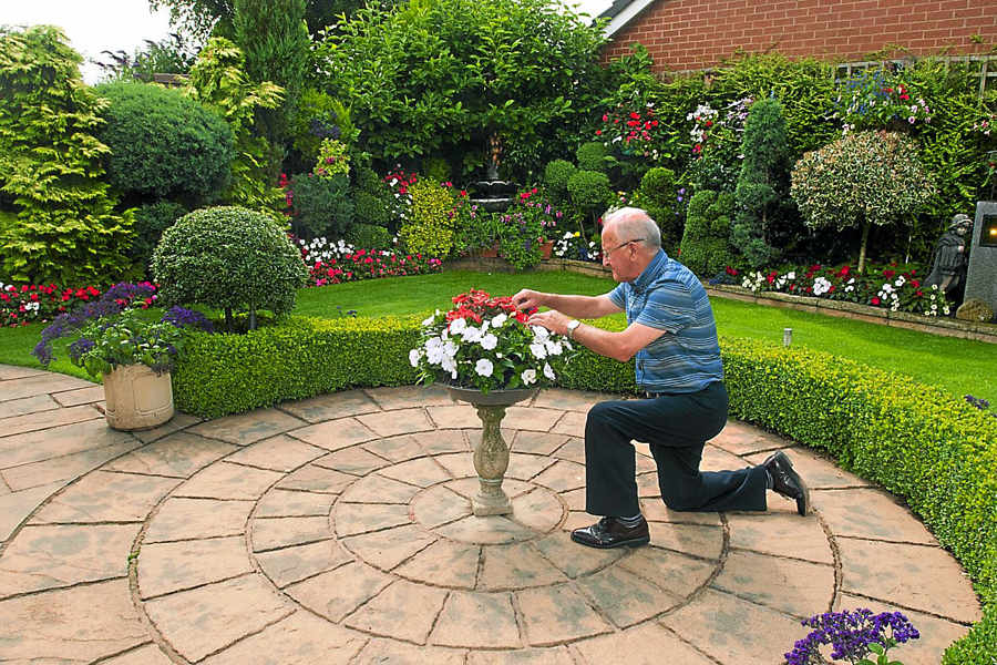 Beautiful garden earns John three awards in Newport In Bloom contest |  Shropshire Star